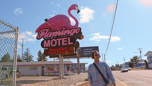 the-mystery-of-the-pink-flamingo-4