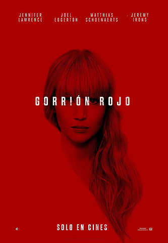 gorrion rojo-1